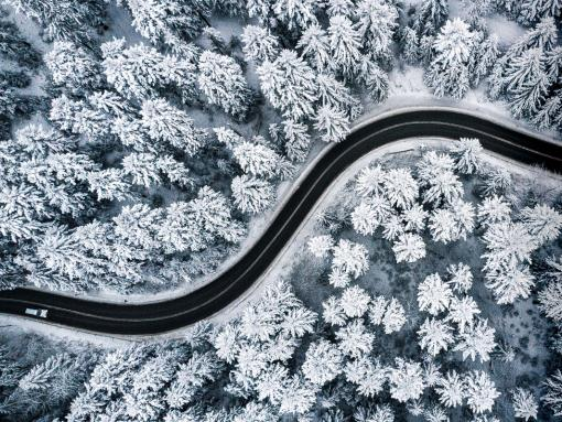 winding road through snowy forest